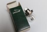 1x Jaguar XJ XJS XJ8 XJ12 Glühbirne Lampe Ligh Lamp Bulb JLM9595